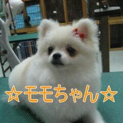 IMG_9867.jpg