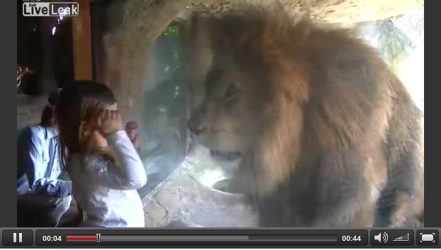 少女を狙うライオン・・・