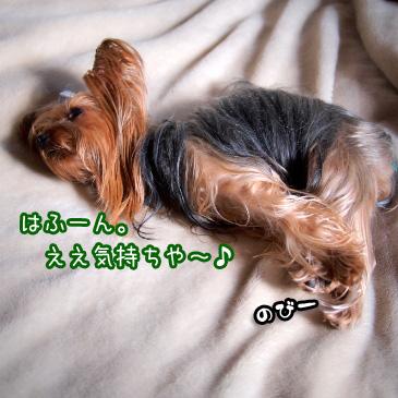 1_20110119174020.jpg