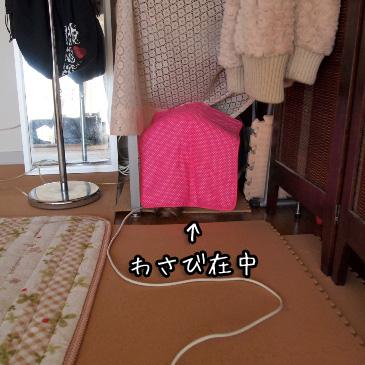 1_20110224185008.jpg