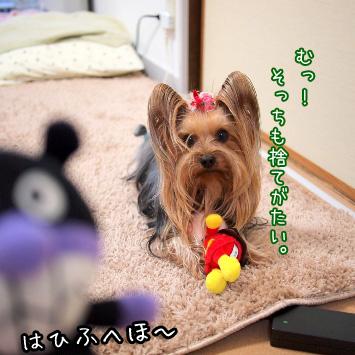 2_20110320121610.jpg