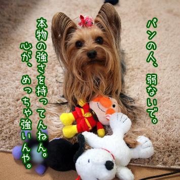 2_20110322105109.jpg