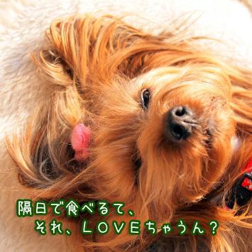 3_20110330164854.jpg