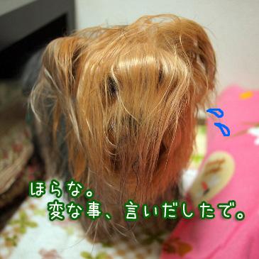 4_20110118200352.jpg