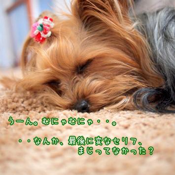 4_20110307194626.jpg