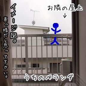 4_20110316122152.jpg