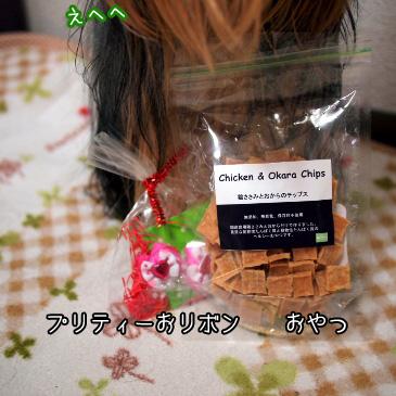 5_20110110172229.jpg