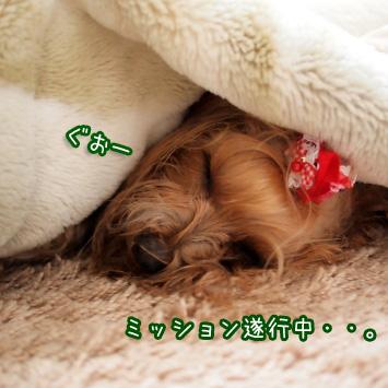 6_20110322105108.jpg