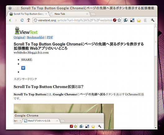 Text Only, Please! Chrome拡張 広告とFlashの非表示