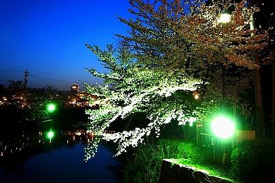 岡崎公園01044