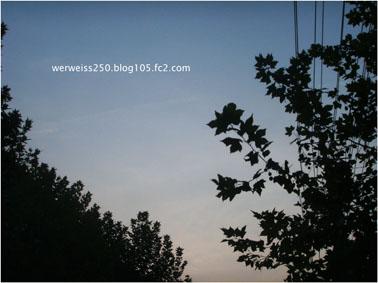 SSL11637=.jpg