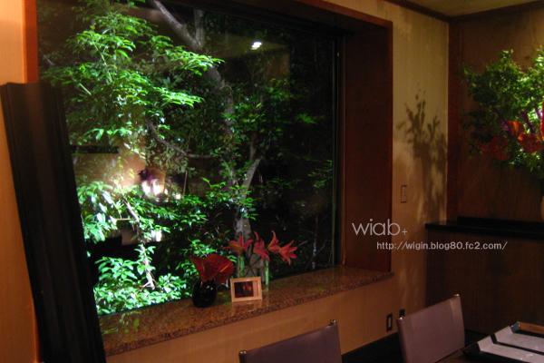 渋谷とは思えない静けさと、この窓から観える緑の風景。 川も流れてる