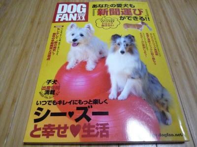 5.DOG FAN