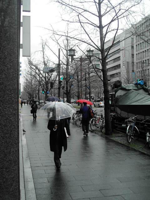 雨の御堂筋・・・