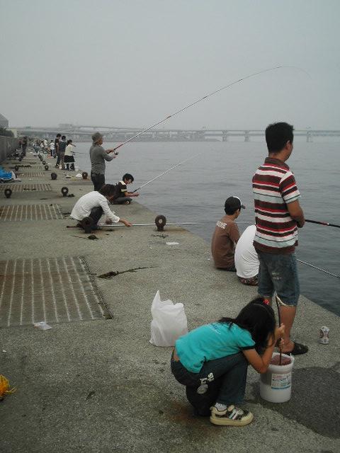 関空に続く空港連絡橋も見えます。。