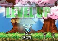 Maple0021.jpg