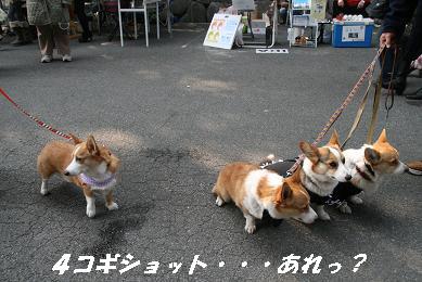1_2488.jpg
