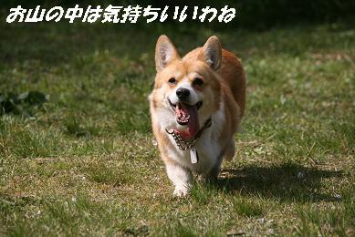 1_5160.jpg