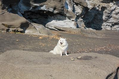 浜辺にて。