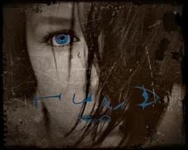 Hund+Demo_convert_20110419174129.jpg