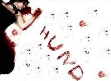 hund_convert_20110419174108.jpg