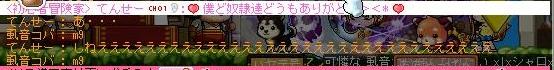 Maple110831_004614.jpg