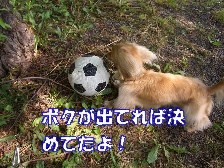 ronaサッカー