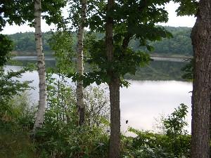 忠烈布湖の図