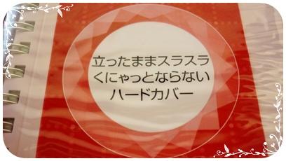 019-20120330.jpg