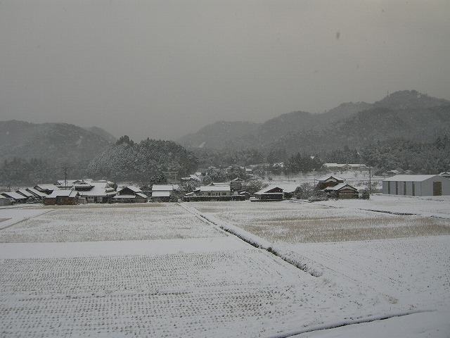 雪の弥富090125
