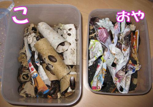 oyakoke-ji