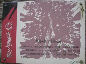 竜王 001 (16)
