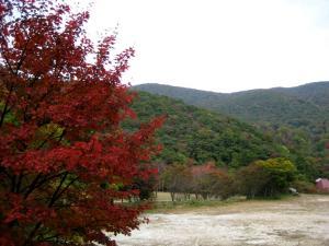 IMG_hibayama1630.jpg