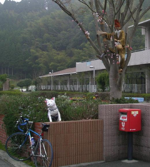 20110416hanasaka.jpg