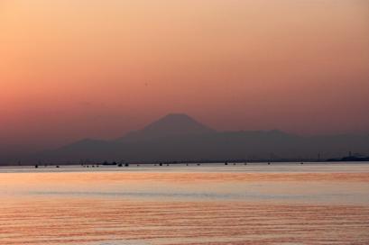 ペット博と幕張と海と・・・♪夕陽10