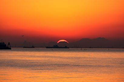 ペット博と幕張と海と・・・♪夕陽7