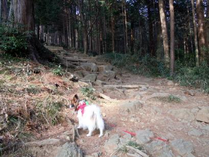 筑波山へ行ってきたよ♪6