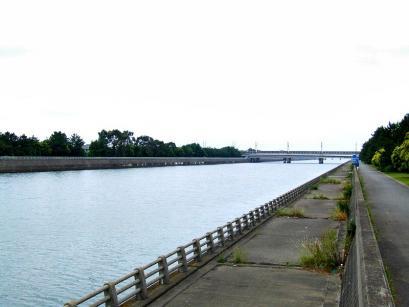 800px-HanamiGawa2006-6.jpg