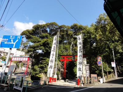 20110319_来宮神社_S