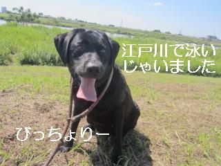 IMG_0604びっちょり
