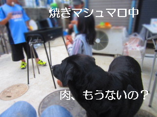IMG_0606肉ーー