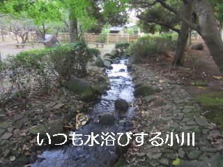 IMG_0836小川