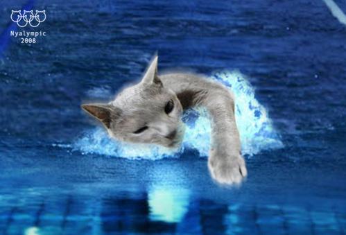 U-18のパンチラ動画 [転載禁止]©bbspink.comYouTube動画>30本 ->画像>4042枚