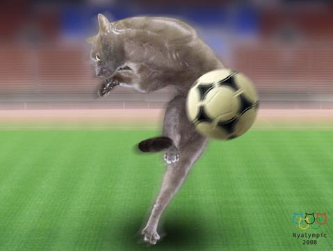 チャク姫サッカー