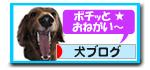 20071102001424.jpg