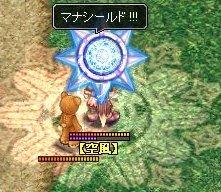 0223_4A4A.jpg