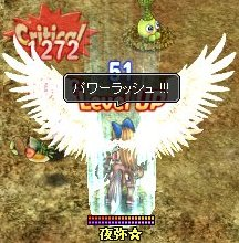 1203_E1CB.jpg