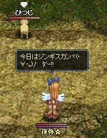 20060318213002.jpg