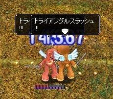 20060323204602.jpg