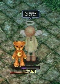 20060405095848.jpg